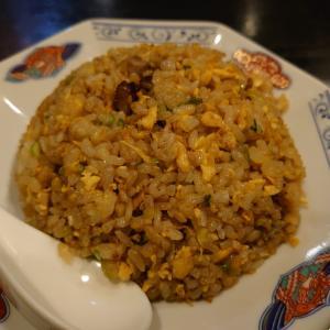 小松市沖町にある麗華で、チャーハン、タンタン麺、焼きギョーザ