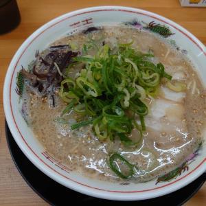 小松市長崎町にある丸久堂小松インター店で、九州とんこつラーメンのチャーハンセット。