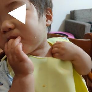 双子兄、魚のアレルギーが出る(1歳5ヶ月)