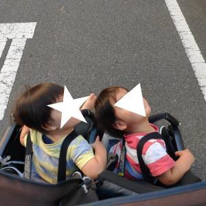 乗り物大好きな双子(1歳9ヶ月)