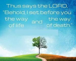 ―置かれた命の道と死の道―