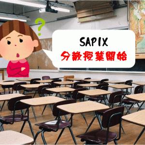 【SAPIX】コロナ禍の分散授業開始!行ってみての感想は?
