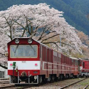川根両国春景色