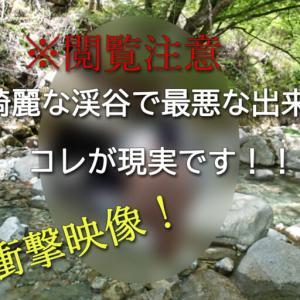 【木曽釣行】綺麗な渓谷で最悪な出来事