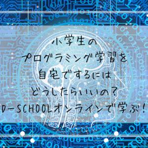 小学生のプログラミング学習を自宅でするにはどうしたらいいの?D-SCHOOLオンラインで学ぶ!
