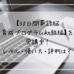 【30日間英語脳育成プログラム初級編】を受講中!レベル・使い方・評判は?