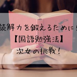 読解力を鍛えるために!【国語勉強法】次女の挑戦!