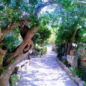 エルサレム観光の穴場スポット 園の墓でキリスト聖地巡礼【体験レビュー】