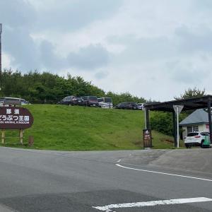夏の休日、近くの那須高原で過ごすオススメスポット(^^♪