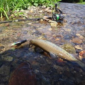 8月2日~8月4日 猛暑の十勝釣行 Day1(湖と渓流)