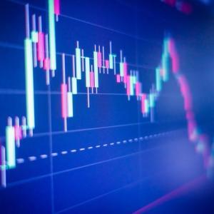 【超絶悲報】米国株はすでに『割高』か。米国株の最新の予想値から見るPERはおよそ19倍との見解。