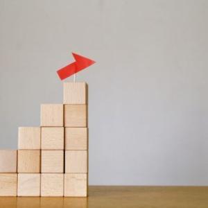 【悲報】持ち株のほとんどが下落する中、買い増ししたのはアノ銘柄でした・・・