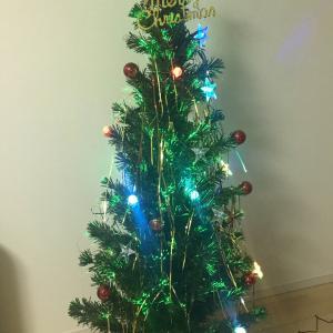 クリスマスツリーの出番です❗️