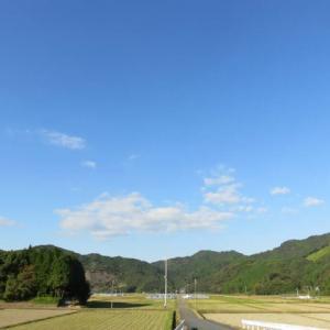 11月12日の散歩 晴れ