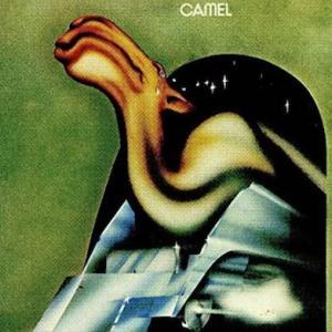 Camel / Camel