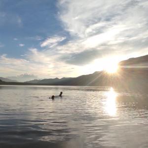 お盆休み いつもの湖へ
