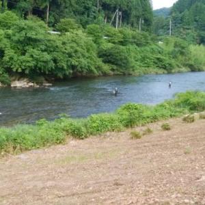 斐伊川の釣りは密!