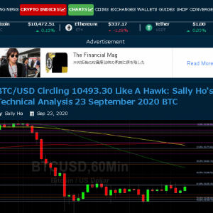 【Z502】BITLINKを取り上げた「Crypto Daily」がまあまあすごいサイトだった件…BITLINKの始動目安