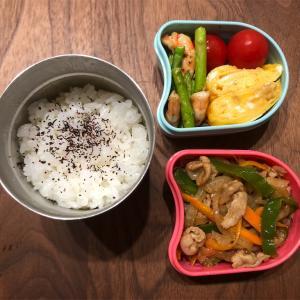 9月17日。今日の娘のお弁当(o^^o)