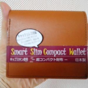 キャッシュレス対応の小さなお財布買いました👛😊