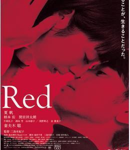 最近観た映画「RED」🎬📝