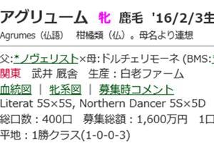 ☆2016年度産駒_20200521(アグリューム)☆