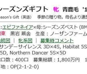 ☆2017年度産駒_20201021(シーズンズギフト)☆