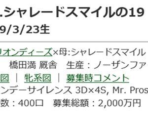 ☆2019年度産駒20201130(シャレードスマイルの19_オリエンタルポピーの19)☆