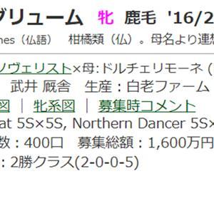 ☆2016年度産駒_20210608(アグリューム)☆
