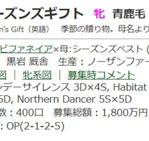 ☆2017年度産駒_20210803(シーズンズギフト)☆