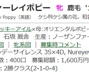 ☆2018年度産駒20210921(シャーレイポピー)☆