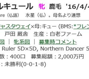 ☆2016年度産駒_20190818☆