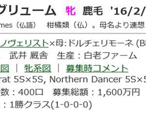 ☆2016年度産駒_20191120(アグリューム)☆