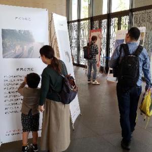 殺処分寸前に保護されたワンニャン写真展開催