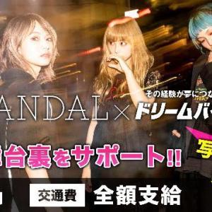 """SCANDAL TOUR 2019 """"SCANDALの対バンツアー""""をサポートできるアルバイトを募集"""