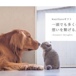 SNSを通じて犬・猫の保護活動に参加できる「 #anifareギフト 」