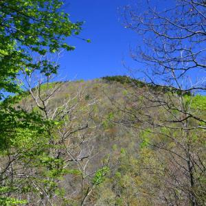 平成最後の山歩きは『日本国』