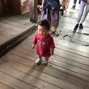 駐在夫が子連れで楽しむホイアン観光