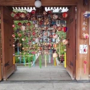 本日も真田山プールで2000m泳ぎました。本日は事務所から自転車で。天性寺の七夕の願い事を書く短冊が今年はなしに。
