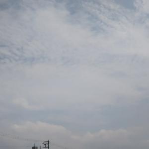 本日平野区のしゃぶ葉から業務スーパーあたりと天王寺区の真田山プールから三光神社あたりの東の空にウルトラけったいな雲。何が起こるのか。