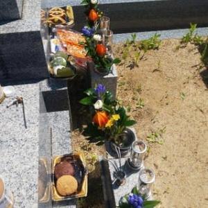 本日枚方長尾にお盆の墓参り。枚方の最高気温は37.6度。暑い暑い死ぬほど暑い墓参りでした。