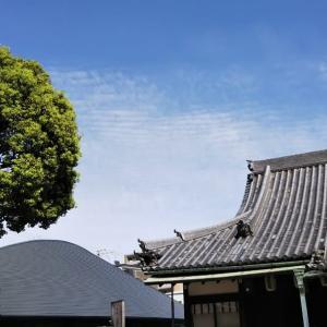 本日は大阪東住吉区法楽寺上空でちょっと気になる地震雲を発見。