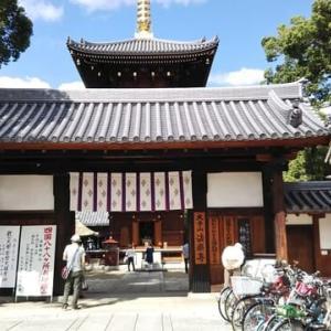 本日は田辺のお不動さん法楽寺の秋の大祭。大阪市内最大規模の柴燈護摩。柴燈護摩のあとは茂山社中の人による狂言。おみくじは44番吉。