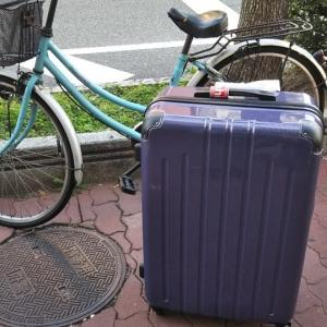 本日も閉店売りつくしセールの上新電機J&Pテクノランドへ。本日は機内預け最大のスーツケース(紫)を11800円→4900円で来年夏のボーナス一括払いで買いました。