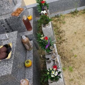 本日は枚方長尾へ墓参りへ。墓参りをちゃんとしている人はコロナ感染しません。ご先祖様が守ってくれるからです。