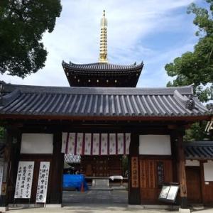 本日は田辺のお不動さん法楽寺へ。明日の彼岸中日法要の申し込みも。おみくじは11番。大吉でした。
