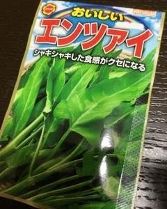 朝採り野菜【マイファーマー】会員様のサラダエンサイやっと注文です✌️そして…
