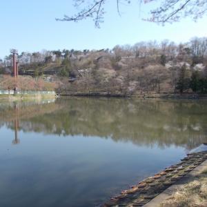 湖沼釣り日記(令和2年4月➁・大槻公園釣行)