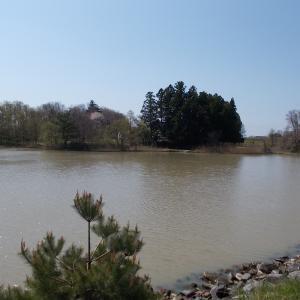 湖沼釣り日記(令和2年4月①・鹿島池及び大槻公園釣行)