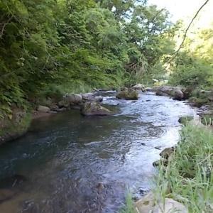 川釣り日記(令和2年5月➁・大塩川)